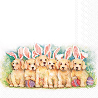 Candy Dogs Lunch Napkins