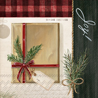 Holiday Wrapping Lunch Napkins