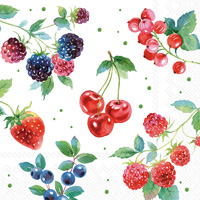 Red Summer Fruits Lunch Napkins