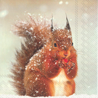 Winter Squirrel Lunch Napkin