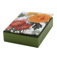 The MET Botanical Illustrations Boxed Notes