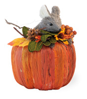 Miller Mouse in Pumpkin