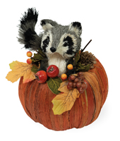 Rudy Raccoon in Pumpkin