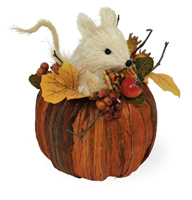 Stewart Mouse in Pumpkin