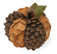 Pinecone Pumpkin
