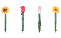 Flowers Pen Set