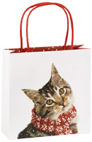 Kitty Gift Bag