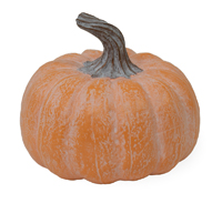 Orange Chalk Short Pumpkin