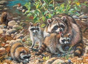 Family Pieces 350 Raccoon Family jigsaw puzzle | Item 54607 | Cobble Hill Puzzle Co