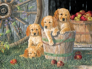 350pc Family Puzzle Puppy Pail  jigsaw puzzle by Cobble Hill Puzzle Co. (mixed piece sizes)