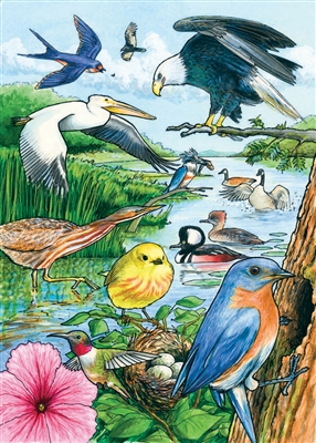 35pc North American Birds Tray jigsaw puzzle | Cobble Hill Puzzle Company