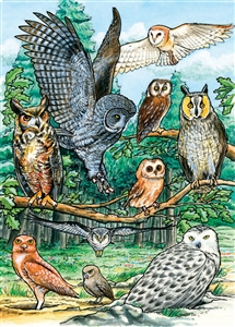 35pc North American Owls Tray jigsaw puzzle | Cobble Hill Puzzle Company