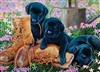 35pc Black Lab Puppies Tray jigsaw puzzle | Cobble Hill Puzzle Company
