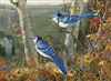 1000pc Blue Jays jigsaw puzzle | 80021 | Cobble Hill Puzzle Co