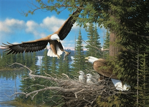 80070 | 1000pc Nesting Eagles jigsaw puzzle | Cobble Hill Puzzle Company