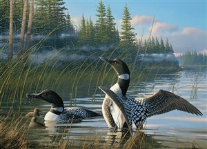 1000pc Common Loons jigsaw puzzle |  Cobble Hill Puzzle Co