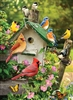 1000pc Summer Birdhouse jigsaw puzzle | 80126 | Cobble Hill Puzzle Co
