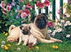 1000pc Pug Family jigsaw puzzle | 80132 | Cobble Hill Puzzle Co
