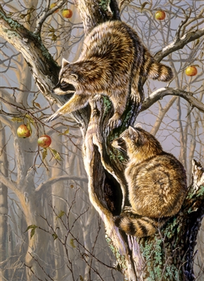 1000pc Ringtail Raiders jigsaw puzzle by Cobble Hill Puzzle Co.