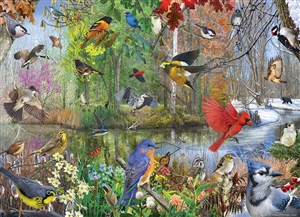 1000pc Birds of the Season jigsaw puzzle by Cobble Hill Puzzle Co.