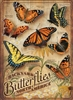500 piece Backyard Butterflies jigsaw puzzle | 85006 | Cobble Hill Puzzle Company