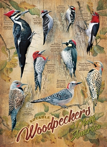 500 piece Notable Woodpeckers jigsaw puzzle | 85007 | Cobble Hill Puzzle Company