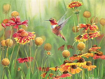 500pc Rufous Hummingbird jigsaw puzzle | Cobble Hill Puzzle Company