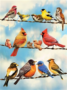 500pc Birds on a Wire jigsaw puzzle | Cobble Hill Puzzle Company