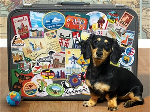 500pc Dachshund 'Round the World dog jigsaw puzzle | 85039 | Cobble Hill Puzzle Company