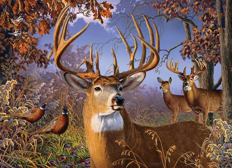 Cobble Hill Puzzles Deer Field by Artist Greg Giordano 500 Piece Animals /& Wildlife Jigsaw Puzzle