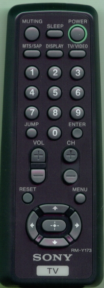 SONY 1-418-852-11 RMY173 Genuine  OEM original Remote