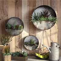 6473 - Aria Succulent Wall Planters (Set of 3)