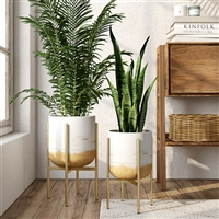 8002 - Paloma Modern Planters (Set of 2)