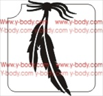 hanging feather duo glitter tattoo stencil
