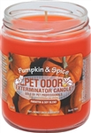 Pet Odor Exterminator Candle - Pumpkin & Spice