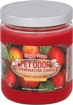 Pet Odor Exterminator Candle - Sugar Plum