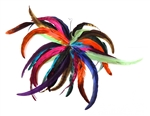 CARNIVAL SPIRAL FEATHER EARRING