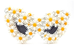 SWAN RIVER DAISY MADAME BUTTERFLY GLASSES