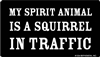 My Spirit Animal is a Squirrel in Traffic