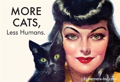 MORE CATS, Less Humans