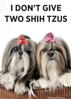 I don't give two shih tzus