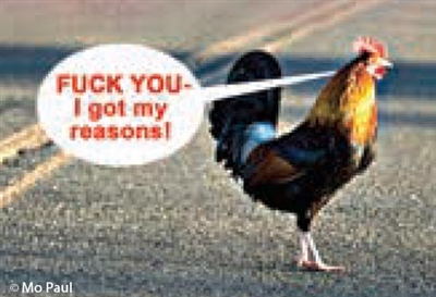 FUCK YOU - I got my reasons! (Chicken crossing the road)
