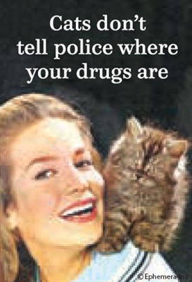 Cats don't tell police where your drugs are