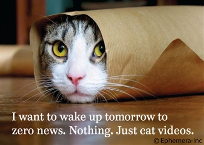 I want to wake up tomorrow to zero news. Nothing. Just cat videos