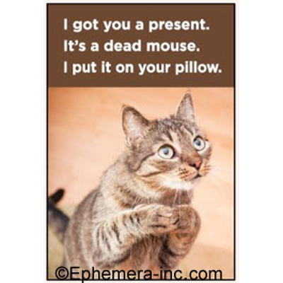 I got you a present. It's a dead mouse. I put it on your pillow.