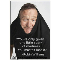 """You're only given one little spark of madness. You mustn't lose it."" -Robin Williams"