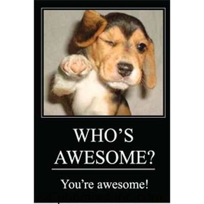 WHO'S AWESOME? You're awesome!