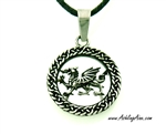 Welsh Dragon 316 L Stainless Steel Pendant (s214)