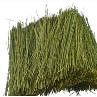 0595086 FIELD GRASS, Light Green, Bag 15g
