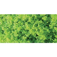 0595102 TURF, MARTIAN GREEN - Fine, Shaker 60 cu in